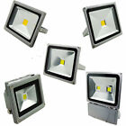 10W 30W 50W 100W LED Flood light White Outdoor Spotlight 12V 110V New OY