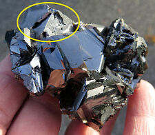 Big Blade, High Luster Sphalerite with Galena. Rhodope Mts, Bulgaria