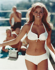 RAQUEL WELCH 8 X 10 PHOTO WITH ULTRA PRO TOPLOADER