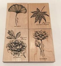 Stampin Up Flowers Botanical Leaves Floral 2001 Rubber Stamps Lot