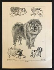 Original 1934 Dog Print / Bookplate - CHOW, Adult and puppies, by Vere Temple