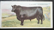 ABERDEEN ANGUS BULL   Vintage Illustrated Card # VGC