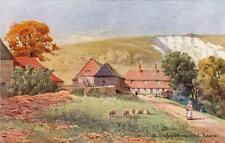 A Sussed Homestead Lewes Artist illustrated old pc South Downs Series SC, H