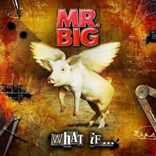 Mr. Big What If Japan CD