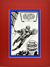 AMAZING SPIDER-MAN - The END Of The BEGINNING PROFESSIONALLY MATTED