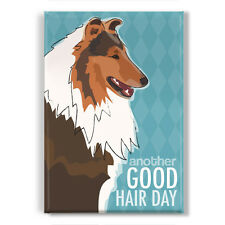 Collie Gifts - Refrigerator Magnets with Funny Sayings - Another Good Hair Day