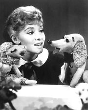 SHARI LEWIS 8X10 PHOTO WITH LAMB CHOP & PUPPET