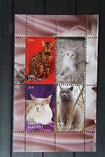 Katzen 06 cats Chats Tiere animals pets Fauna Block KB sheets postfrisch ** MNH