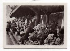 PHOTO - Vintage Snapshot - Marché aux fleurs à Cannes Fleuristes - Vers 1930.