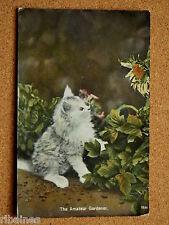 R&L Postcard: The Amateur Gardener Cat Kitten