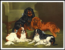 CAVALIER KING CHARLES ENGLISH TOY SPANIEL GROUP LOVELY DOG PRINT POSTER