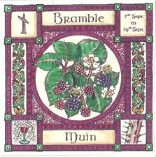 BRAMBLE TREE GREETING CARD 2nd Sept-29th Sept CELTIC PAGAN Birthday WICCAN OGHAM
