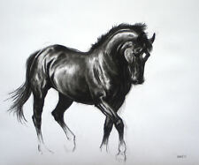 'Black IV' horse art LE charcoal print mounted ready to frame by H Irvine