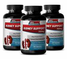 Kidney Detox - Kidney Support 700mg - With Uva Ursi (Herb Powder) Supplements 3B