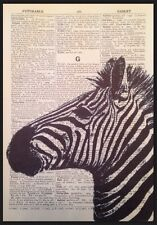 ZEBRA Vintage Dictionary Page Print Wall Art Picture Zoo Safari Animal Black