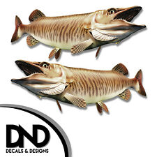"Tiger Musky - Fish Decal Fishing Tackle Box Bumper Sticker ""5in SET"" F-0920 D&"