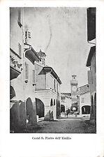 9410) CASTEL S. PIETRO DELL'EMILIA (BOLOGNA) IL CASSERO, ANIMATA.