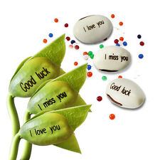 Magic Bean Seeds Plant Growing Message Word for kids Lover Gift with Crystal Mud