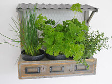 Vintage Style Wall Mount Herb Planter Shabby Chic Wood Window Box Flowers Plants