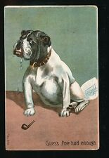 Dogs BULL DOG Smoking Pipe Artist Used 1906 PPC