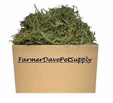 10 lb PREMIUM 2nd Cut Timothy Hay-Chinchilla,Guinea Pig