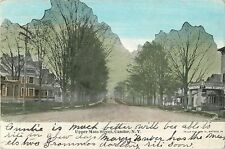 A View of Upper Main Street, Candor NY 1907