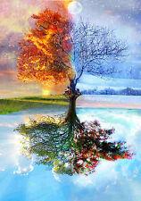Stampa incorniciata-Estate inverno autunno primavera albero (foto poster Arte meteo)