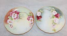 Limoges France BM de M 2 Porcelain Hand Painted Floral Plates