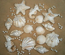 30 edible sugar shells starfish + sand ( golden sugar ) and pearls wedding cakes