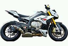 BMW S1000RR 2009-2014/S1000R 2009-2016 SLIP-ON CANS AUSTIN RACING MOTOGP carbon