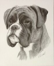 "BOXER HEAD by Ray Russell - DOG PRINT 12"" x 10"" in aid of Boxer Rescue"