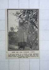 1917 New Use For Powder Puffs By Girl Farmworkers Cornish Orchard