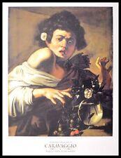 Caravaggio Ragazzo morso da un ramarro Poster Kunstdruck im Alu Rahmen schwarz