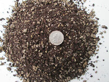 10 Cups -Soil Mix for Spined Succulents & Cactus -Custom Blend - Proper Drainage