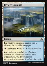 MTG Magic OGW - (x4) Meandering River/Rivière sinueuse, French/VF