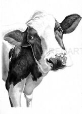 COW ART PRINT - Pencil Drawing Wildlife Animal Sketch A4 Wall Art Artist Signed
