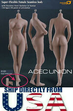 Phicen 1/6 Super Flexible Seamless Body L Bust SUNTAN S12D Removable Feet U.S.A.