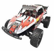 AUTO ELETTRICA BRUSHLESS RADIOCOMANDATA 2.4GHZ EDT-16 BUGGY 1:16 RTR 4WD HIMOTO