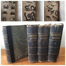History of the Earth and Animated Nature 4vol 1834 leather books set Goldsmith