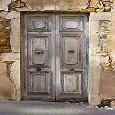 Shabby door 10'x10' CP Backdrop Computer printed Scenic Background YKY-104
