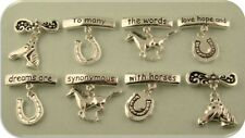2 Hole Beads Horse Bars & Charms with Engraved Saying Silver Metal Sliders QTY 8