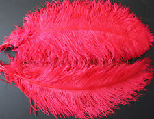 "1 pc of 22-24"" Male Red Ostrich Drab Plume Feather for Wedding Decor, Millinery"