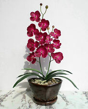 "Butterfly Orchid - 23"" (58cm) - Artificial 'Real Touch' Flower, Imitation Plant"
