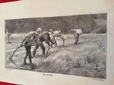 m12i ephemera 1878 book plate the mowers farmer with scythes clear the field