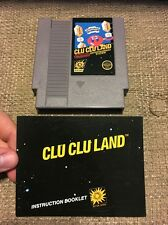 NES Clu Clu Land - Nintendo Game + Manual! Rare Collectors!