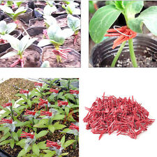 Hot Durable Household Gardening Tools 100pcs Durable Plastic Grafting Clips