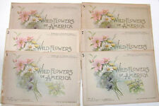 Wild Flowers of America 1894 Color Prints vol.1 #'s 1,2,3,5,7,8. G.H. Buek