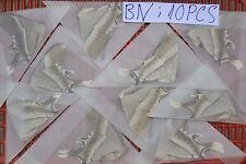 10 x A1- Unmounted MOTH Lyssa zampa ? Uraniidae ? # Vietnam CENTRAL # BN10