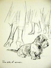 K.F. Barker 1933 FOX TERRIER PUPPY Sick of Women Vintage Dog Print Matted