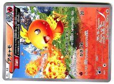 PROMO POKEMON JAPANESE CARD N° 103/XY-P TORCHIC POUSSIFEU